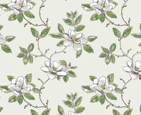 Magnolia for blog